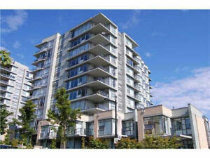 SFU Burnaby Mountain 2Bed+2Bath Pet Friendly Apartment for Rent!