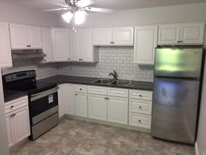 Gorgeous Renovated Two Bedroom