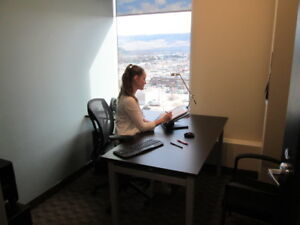 Professional Office at a Price that Works for You!