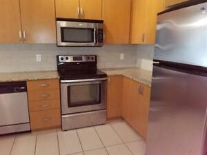 Spacious 2 bed/2 bath in newly renovated apartment