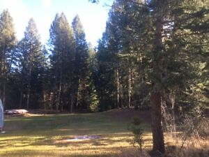 Beautiful building lot/land close to 100 Mile House