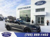 2018 Ford Mustang GT Premium Sudbury Ontario Preview