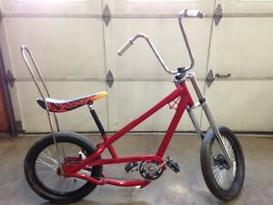 Bicycle Low rider