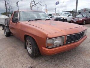 Holden HZ One Ton Ute 1979 Mount Louisa Townsville City Preview