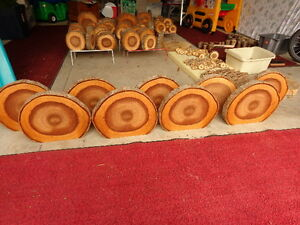 "13"" Wooden Slices"