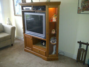 Corner curio / t.v. wall unit / ELECTRIC FIREPLACE CABINET