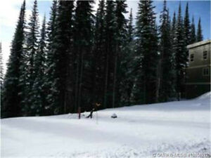 0.27 Acre Lot at the Ridge at Silver Star Mountain