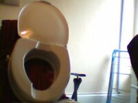 disabled toilet seat