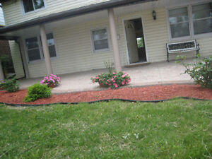 Looking for a ground floor unit w/ seperate entrance