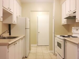 Large One Bedroom With Laminate &  Balcony - FEBRUARY MOVE IN!