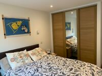 SPACIOUS AND CLEAN DOUBLE ROOM AVAILABLE FOR RENTING NOW