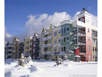 Fully furnished 2 bedroom lock-off unit at Firelight on the Pond