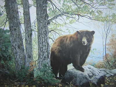 Charles Frace Morning Watch Black Bear Signed Limited Edition Art Print - $79.95