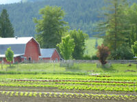 MLS® 10091959  - 11.7 Certified Organic Farm with Water Rights