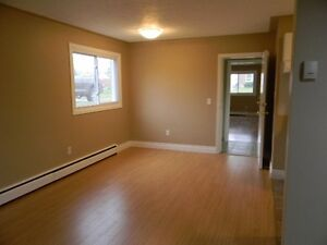 2 BEDROOM UNIT ON SOUTHSIDE OF CHATHAM IN 4 PLEX