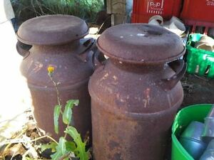 two vintage metal milk cans