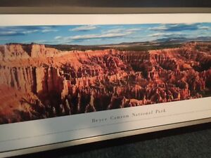 Bryce Canyon Framed Poster Kingston Kingston Area image 3
