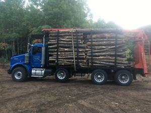 Log lengths: Firewood for sale Kingston Kingston Area image 1