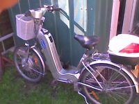 Sakura Electric Bike