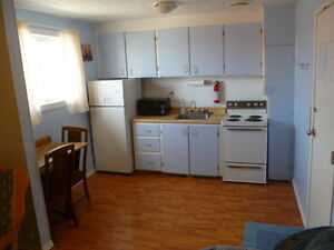 1 Bedroom Furnished Apartment for Rent in Geraldton