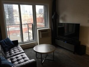 3 1/2 Apartment to rent Griffintown Downtown Centre Ville