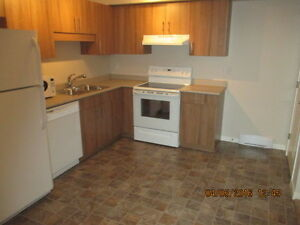 Condo in South Pointe, $1195, 2BR + electric heat, hydro, water