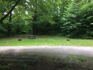 Camping Site for Trailer/RV/Camper/Tent FOREST, PARK, RIVER