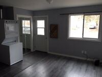 2BDRM Central Barrie APT, Walk to Downtown, Parking for two