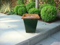 Single Green Square Glazed Pot