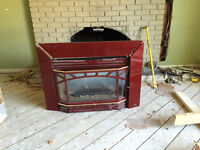 Gas fireplace Pacific Brand