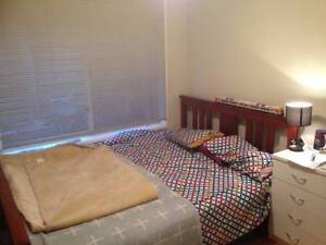 Speer Point 2248 NSW room $150 pw Speers Point Lake Macquarie Area Preview