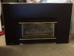 Regency gas fireplace insert with stainless steel chimney liner