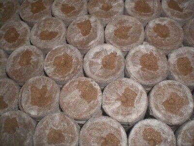 Jiffy de turba prensada para germinar semillas diámetro 45 mm 40unidades