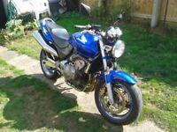 Honda CB600 Hornet.