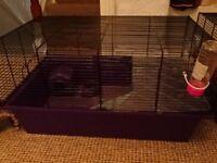 Used Purple Hamster cage