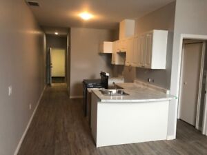 Beautifully Renovated Apartments for RENT!!