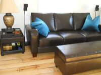 Brown Leather:Living Room Furniture from One Person Home