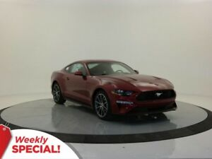 2018 Ford Mustang EcoBoost - Remote Start, Nav, Rear View Camera