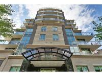 Furnished Executive Condo with 1180 sqft terrace downtown