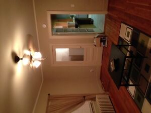 Great 4 Bedroom House for Rent, 5 min walk to St. Clair College
