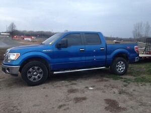 2010 Ford F-150 XLT/XTR Pickup Truck Kawartha Lakes Peterborough Area image 1