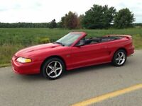 1994 MUSTANG GT CONVERTIBLE LAST CHANCE GOES TO STORAGE MID SEPT