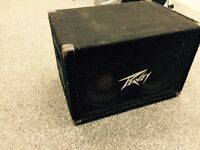Peavey bass speaker 2 x 10 inch. Spares or Repair