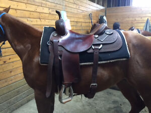 Gorgeous - Like New 16 inch Vic Bennett Cutting Saddle!