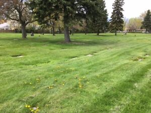 Resthaven Memorial Gardens Cemetery — 4 Plots for Sale
