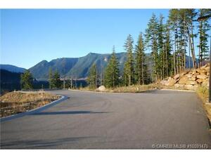 Build your dream home in Sicamous