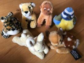 6 Cuddly Baby Animal Toys