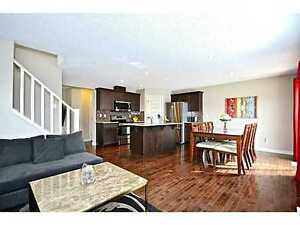 specious and nice basement to rent....