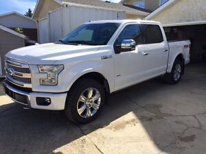 2016 Ford F-150 Platinum - Mint - Every Available Option