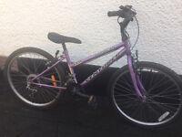 Venturer Barbican Girls purple Bike Bicycle Shimano Gears suit age 12 13